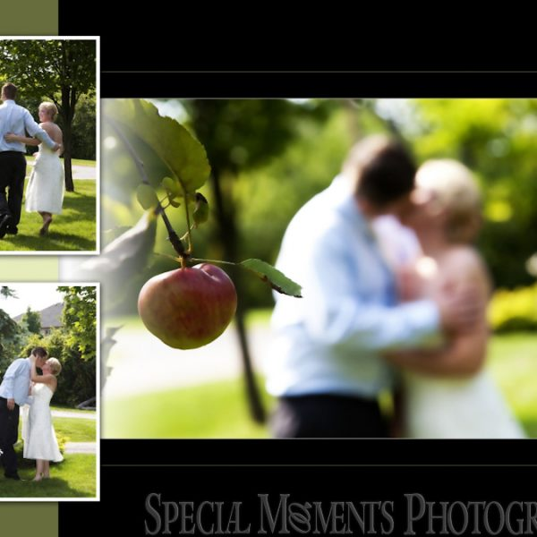 Michael & Amanda's Wedding Album Design: Home Wedding Photos & Reception at John Breco's home in Farmington Hills MI