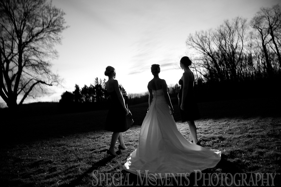 Meadow Brook Hall wedding Rochester wedding photograph