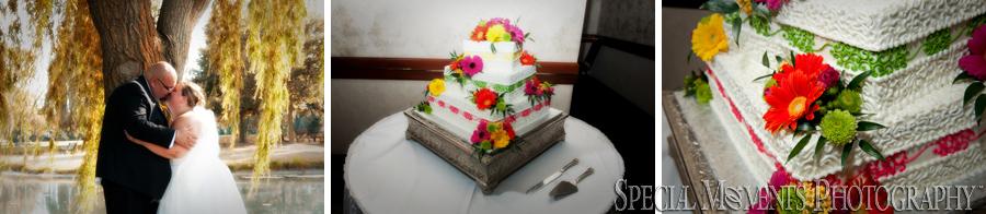 Summit on the Park Canton MI wedding