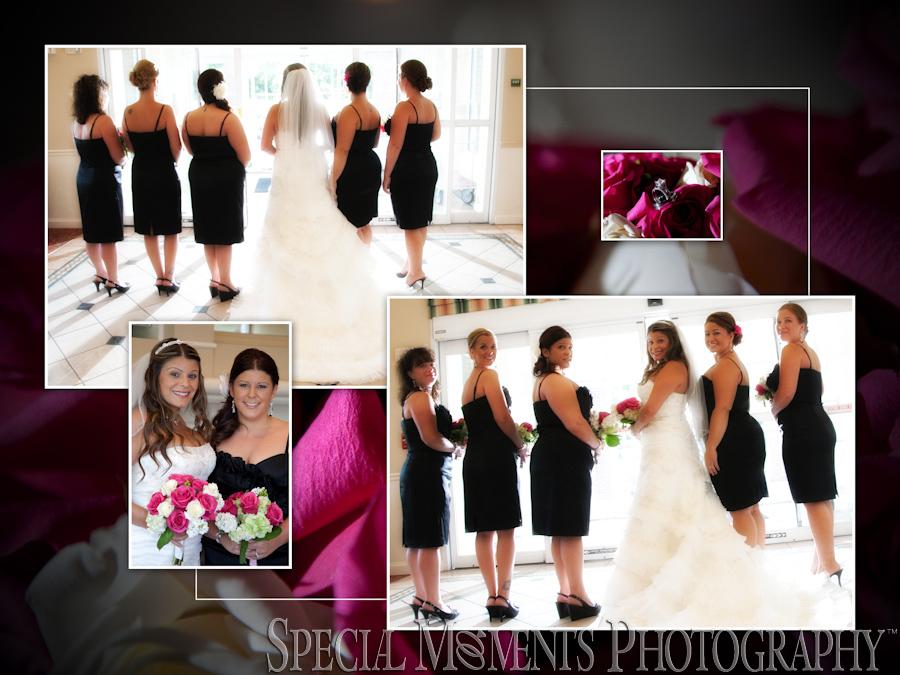 St. Michael Lutheran Canton MI wedding