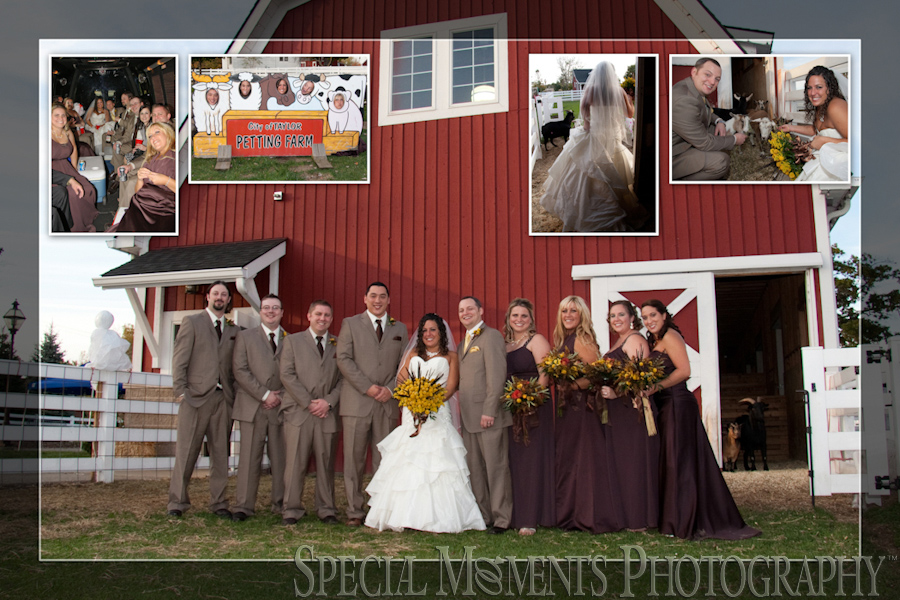 Heritage Park Petting Farm wedding photograph Taylor MI