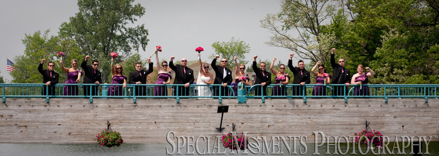 Downtown Brighton MI wedding