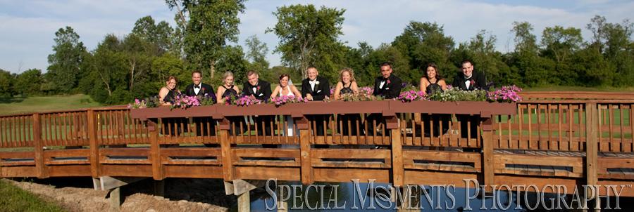 Fox Hills Country Club Plymouth MI Wedding
