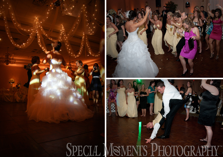 Kensington Court Ann Arbor MI wedding reception