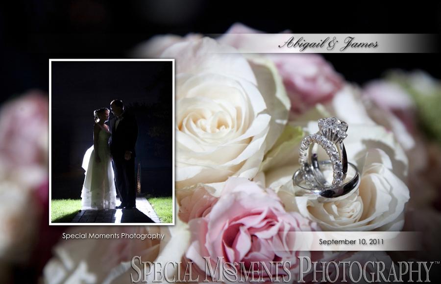 Jefferson Avenue Presbyterian Detroit MI wedding photograph