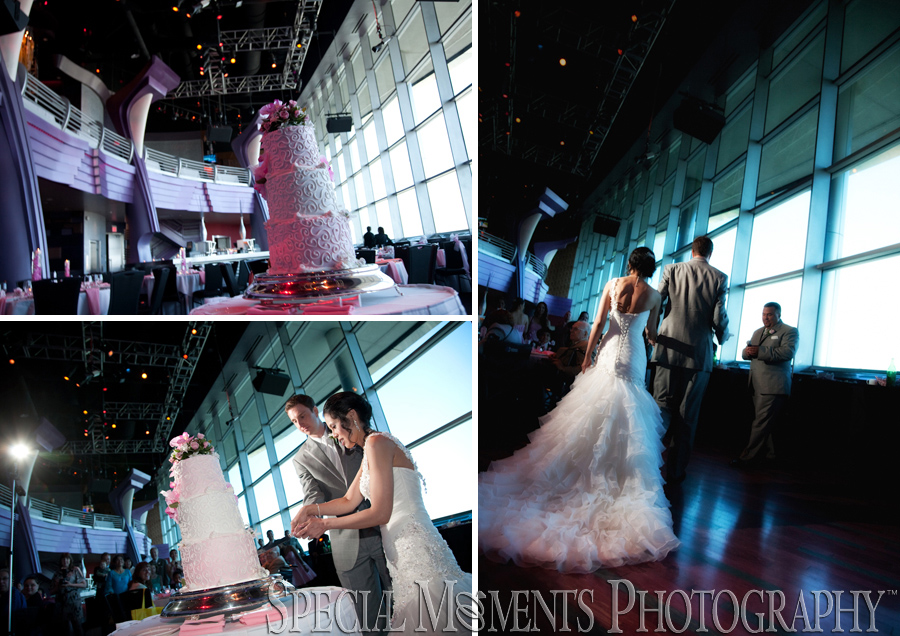 Motor City Casino Weddings Belle Isle Conservatory
