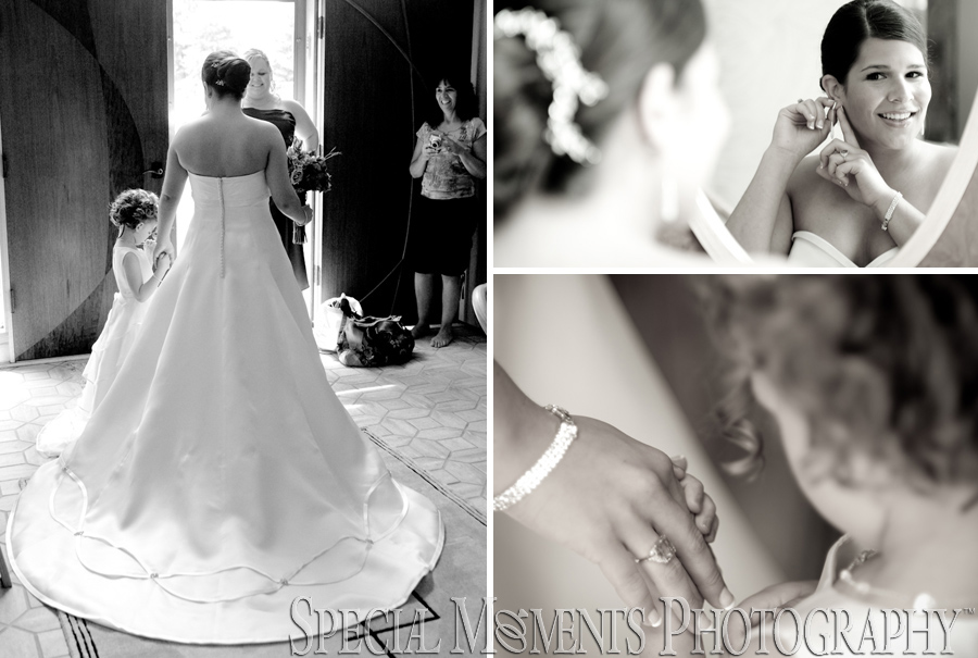 Temple Beth Emeth Ann Arbor MI wedding photograph