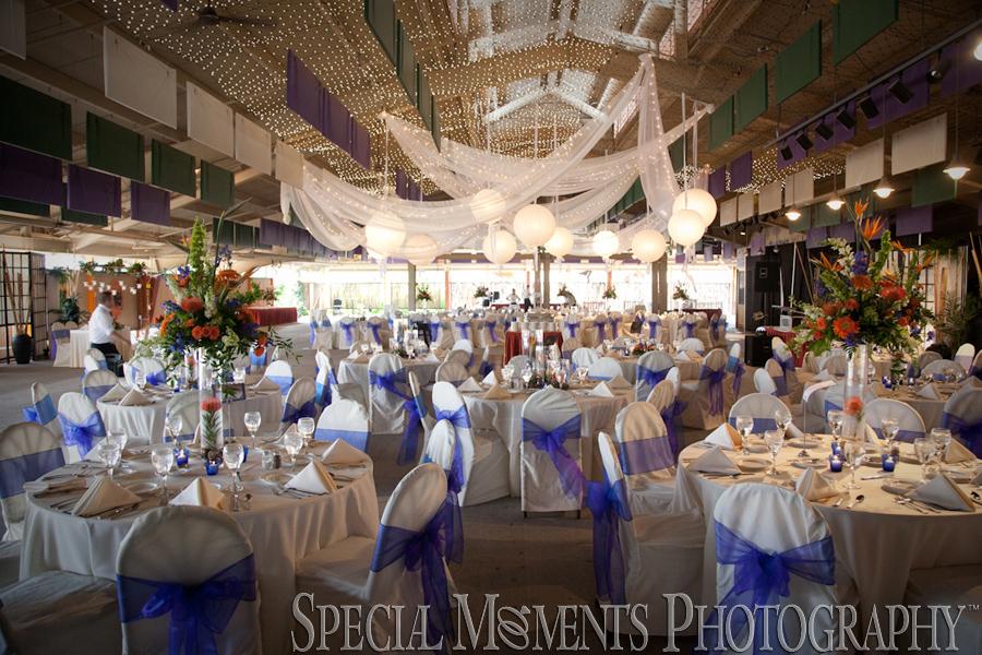 Toledo Zoo wedding Toledo OH