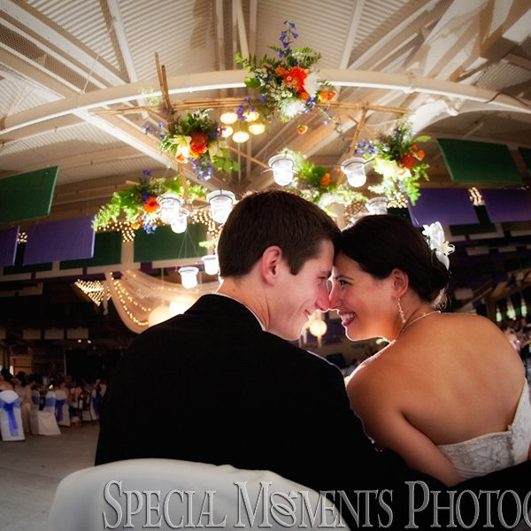 Toledo Zoo Wedding Blog Post Archives Special Moments