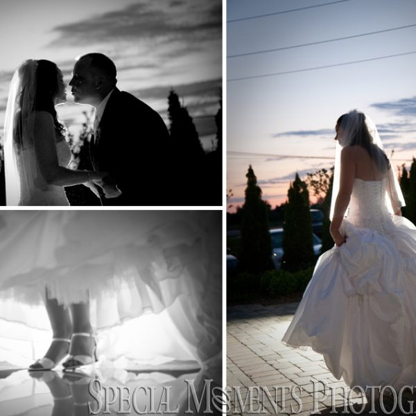 Rachelle & Matthew's celebration at their Grosse Pointe Academy Chapel Wedding & Palazzo Grande MI Reception Shelby Twp.