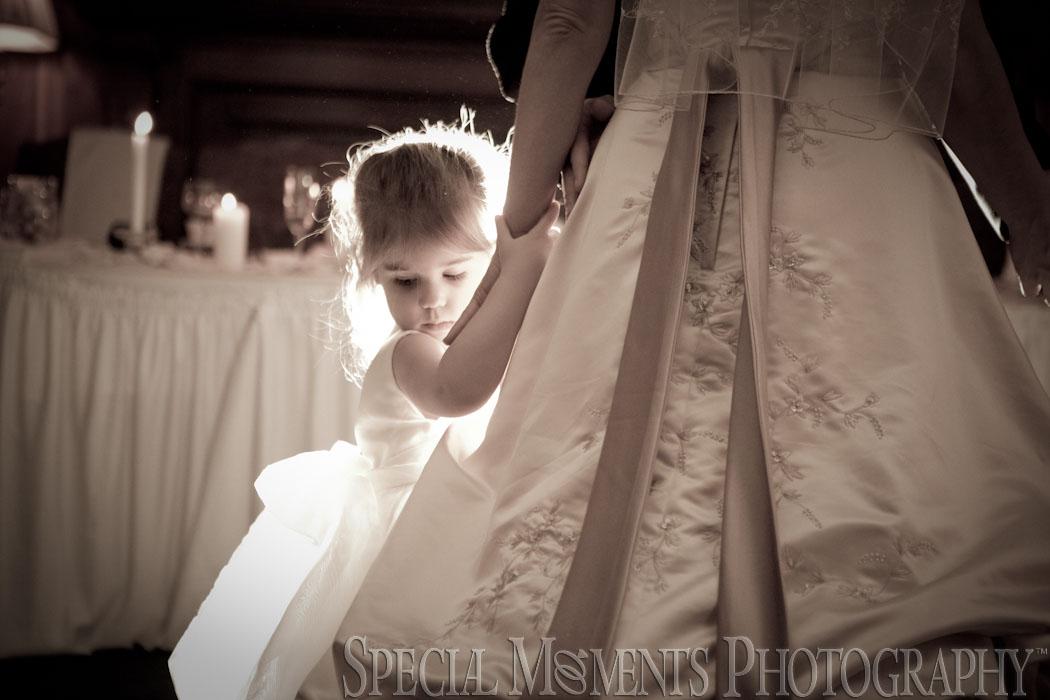 The English Inn Eaton Rapids MI wedding photograph