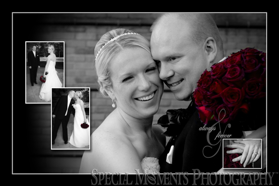 Summit on the Park wedding Canton