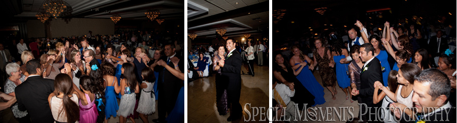 Club Venetian Madison Heights MI wedding photograph