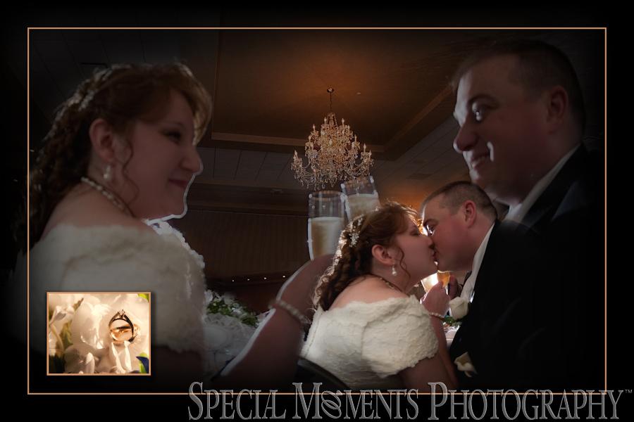 Crystal Gardens Southgate MI wedding photos.