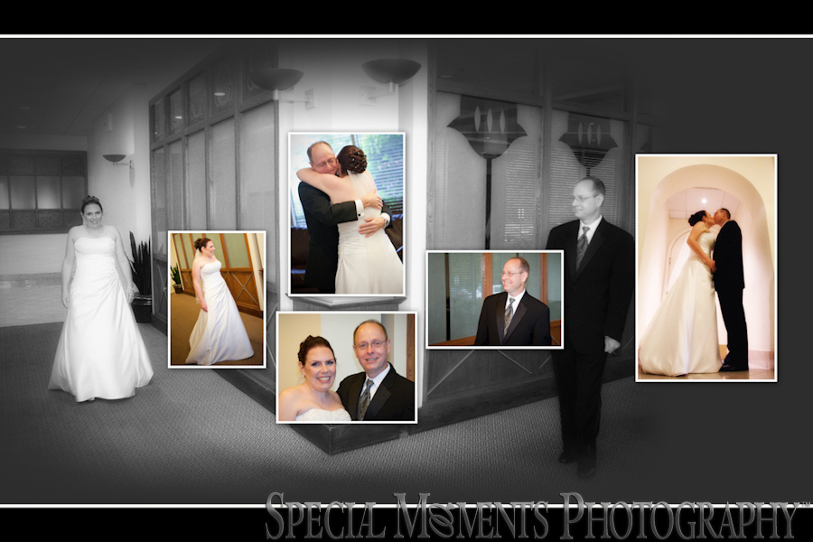 Sheraton Novi MI wedding photograph