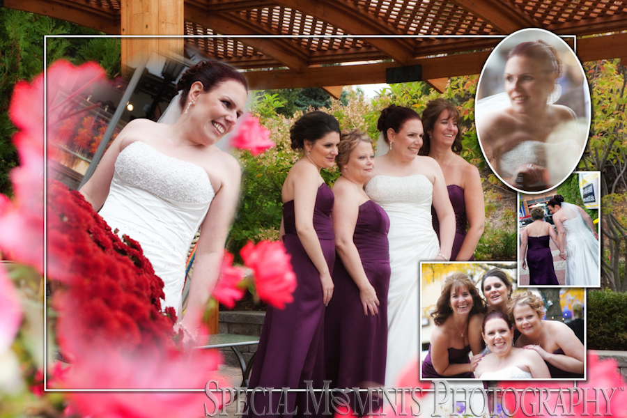 Northville MI wedding photograph