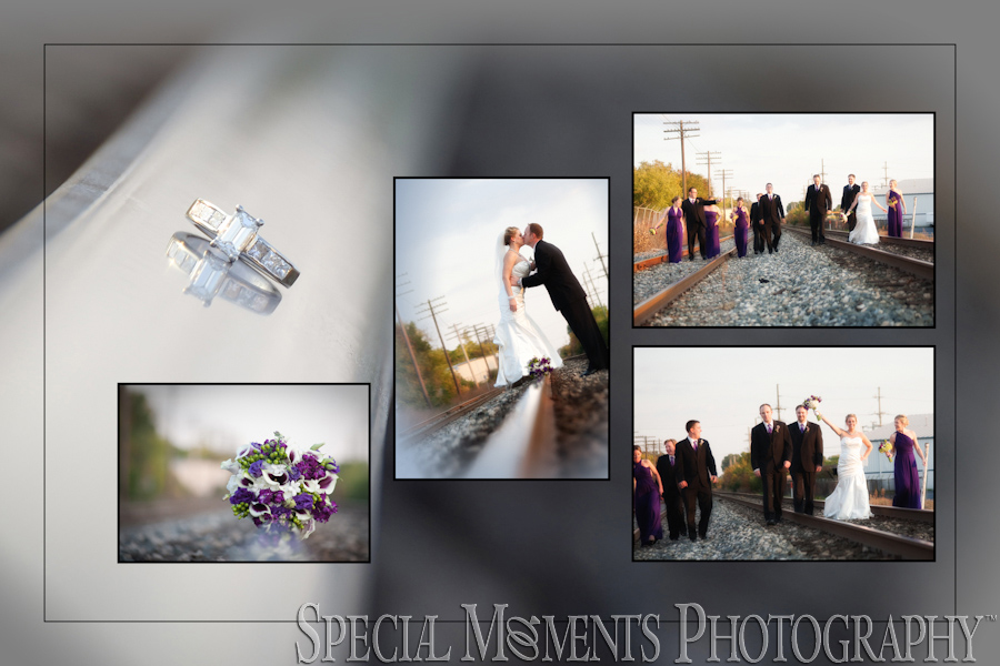 Plymouth MI Downtown wedding photographs