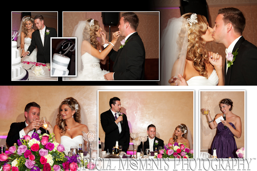 Villa Penna's wedding Sterling Heights