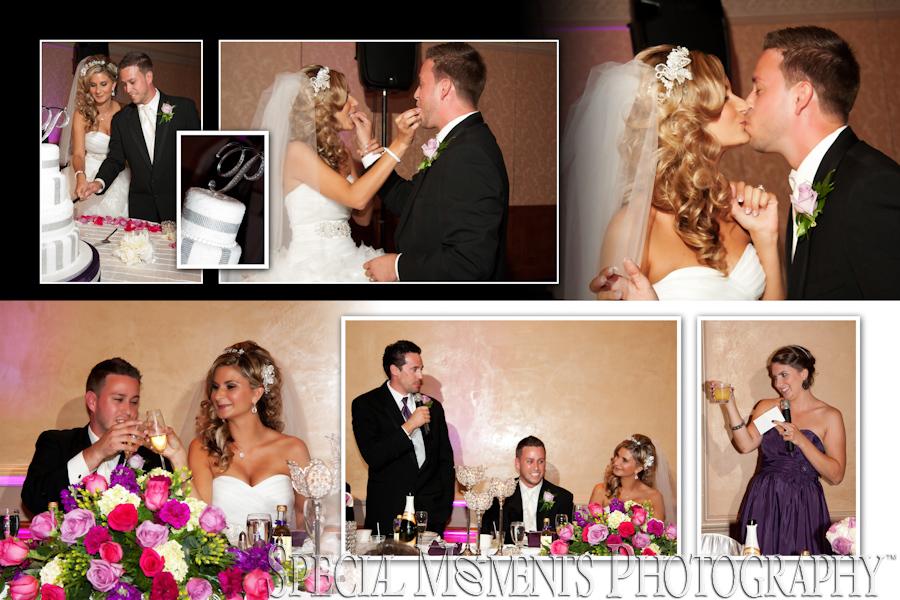 Villa Penna's wedding Sterling Heights