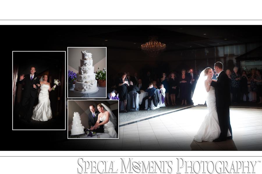St. Mary Cultural Center wedding Livonia MI