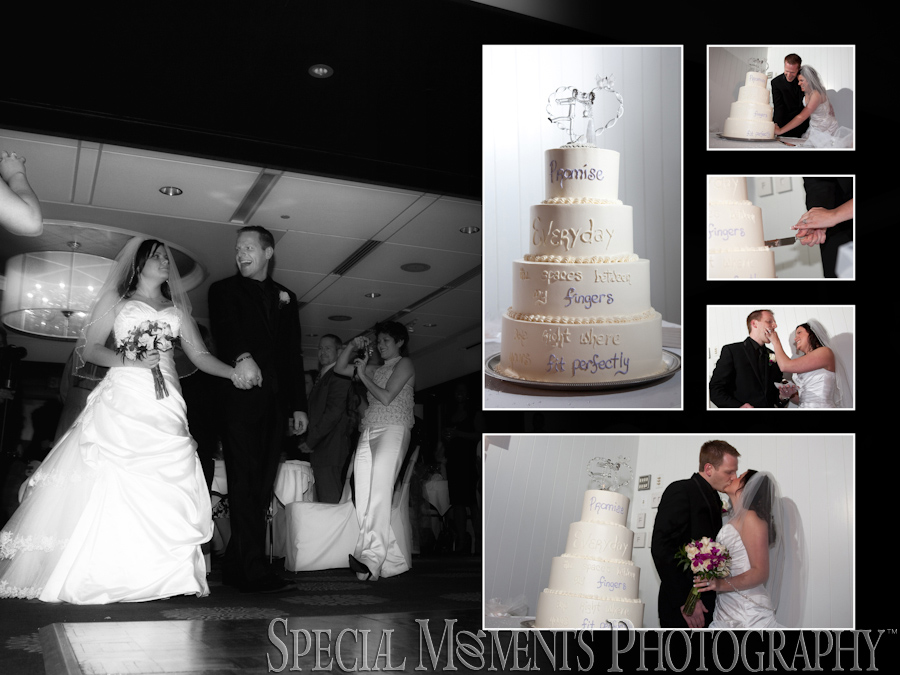 Weber's Inn wedding Ann Arbor MI