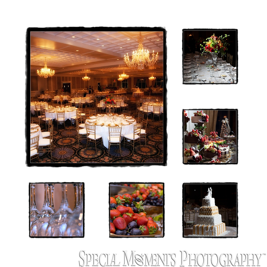 Fine Art Page - Shenandoah Country Club wedding West Bloomfield MI