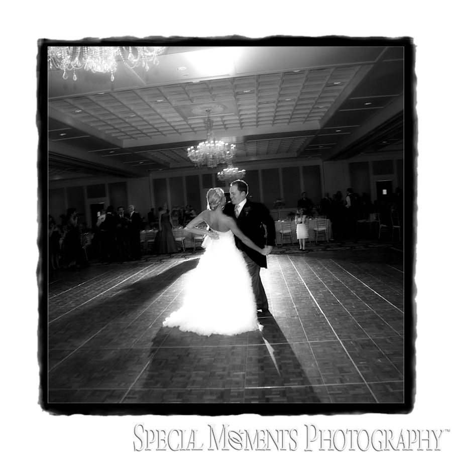 Fine Art Page - Shenandoah Country Club wedding West Bloomfield MI