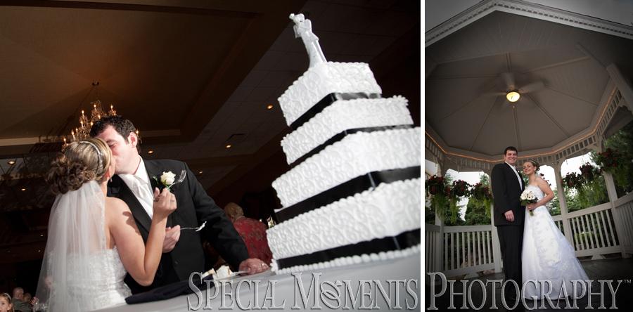 Crystal Gardens Southgate MI wedding