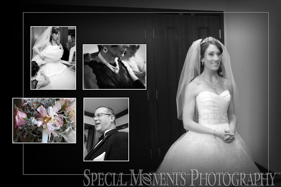 Inn At St. John's Plymouth wedding photos