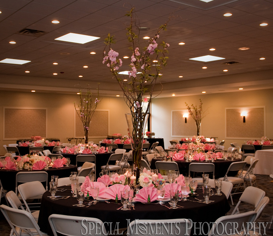 Temple Kol Ami West Bloomfield MI wedding photograph