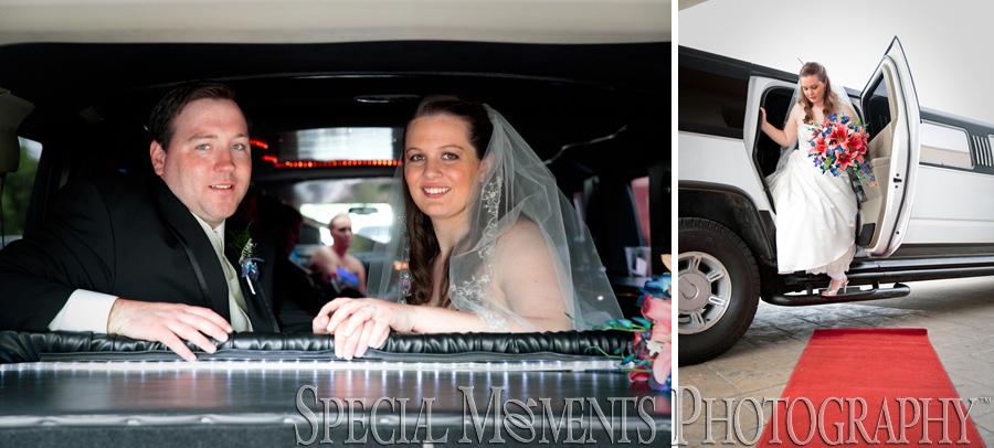Elizabeth Park Trenton MI wedding