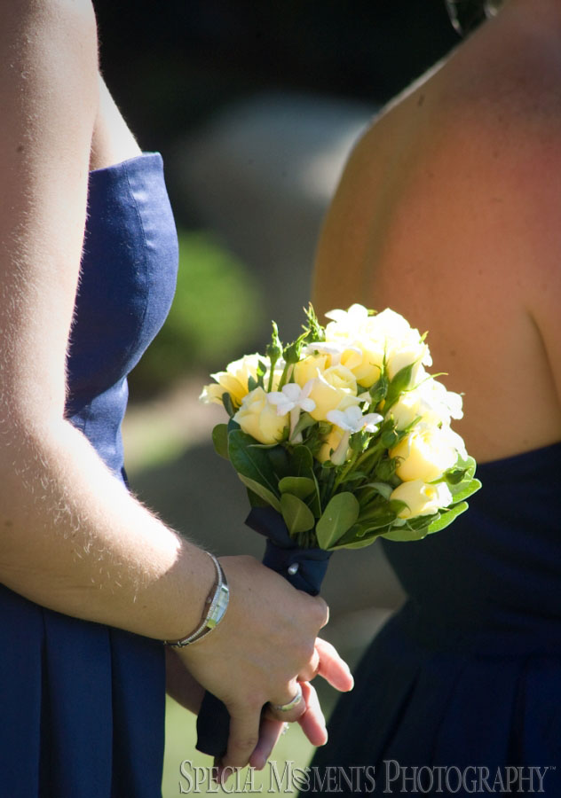 Stafford Perry Hotel Petoskey MI wedding photograph