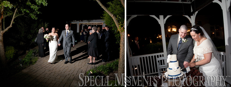 Wellers Carriage House Saline MI wedding reception photograph