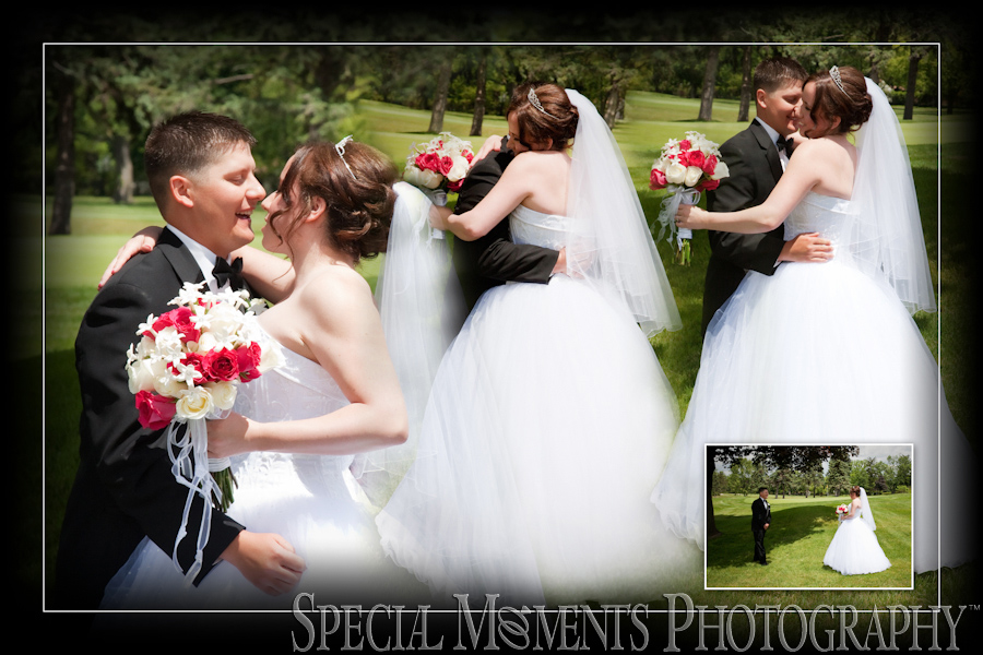 Plum Hollow Golf Club Southfield MI wedding