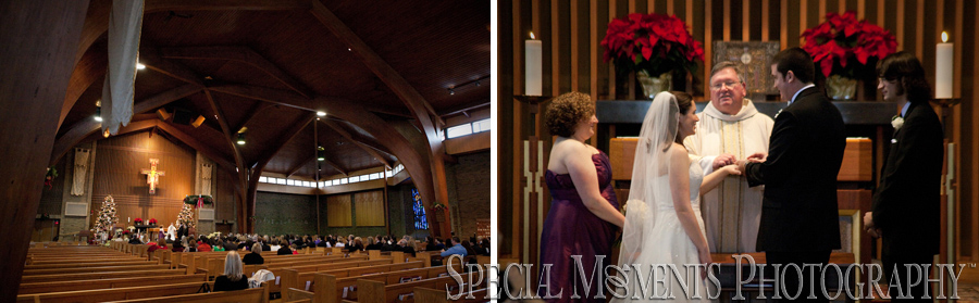 St. Francis of Assisi Ann Arbor MI wedding