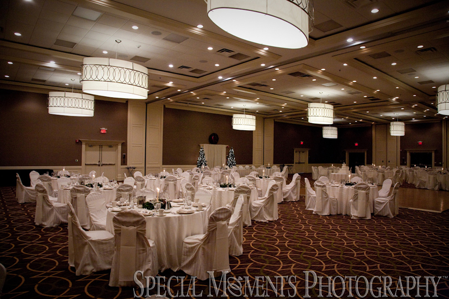 Sheraton Inn Ann Arbor MI wedding reception