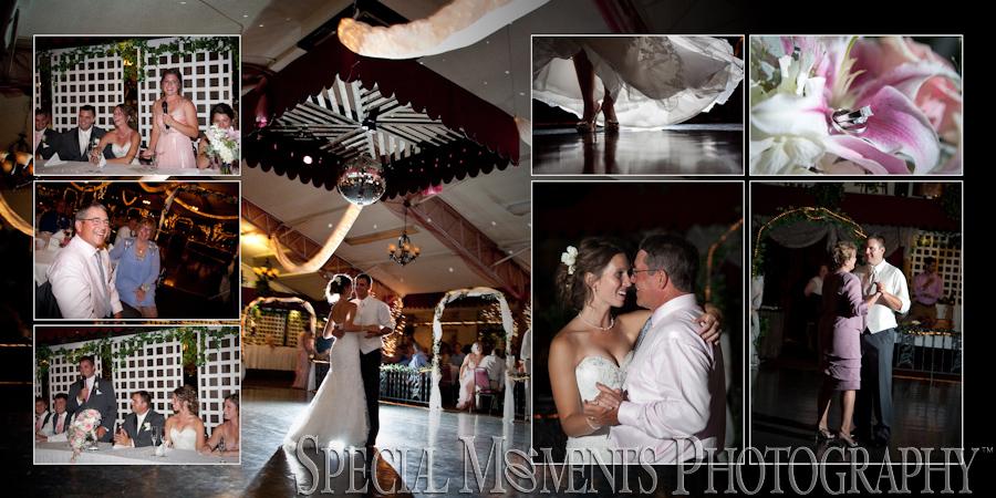 Dusseau Reception Center Temperance MI wedding photograph