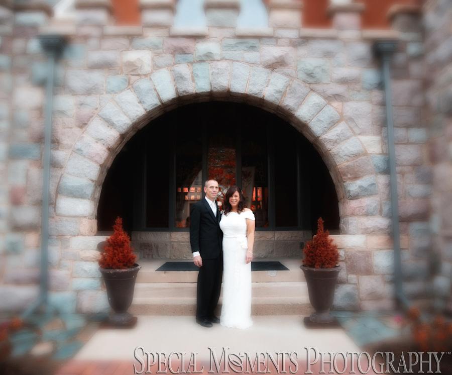 Stone Arch Saline MI wedding photograph
