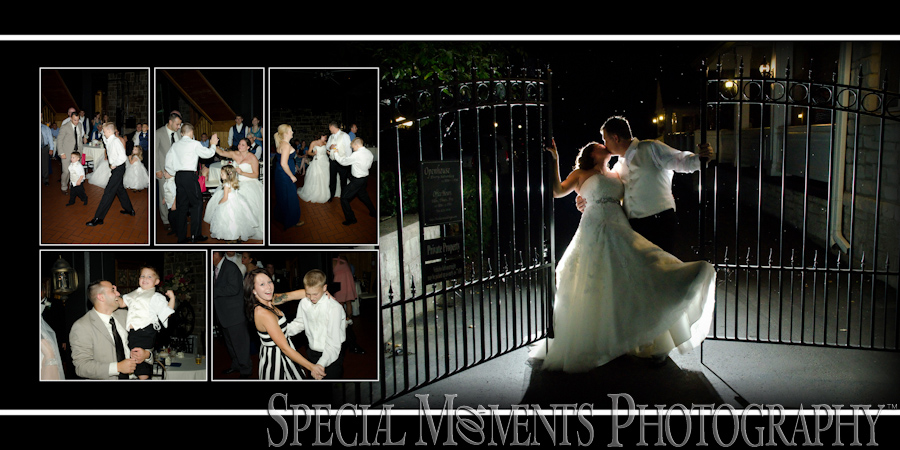 Wellers Saline MI wedding reception photograph