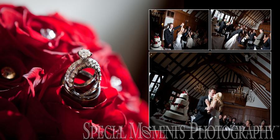 Emily & Shane: Dearborn Country Club Dearborn MI wedding photograph
