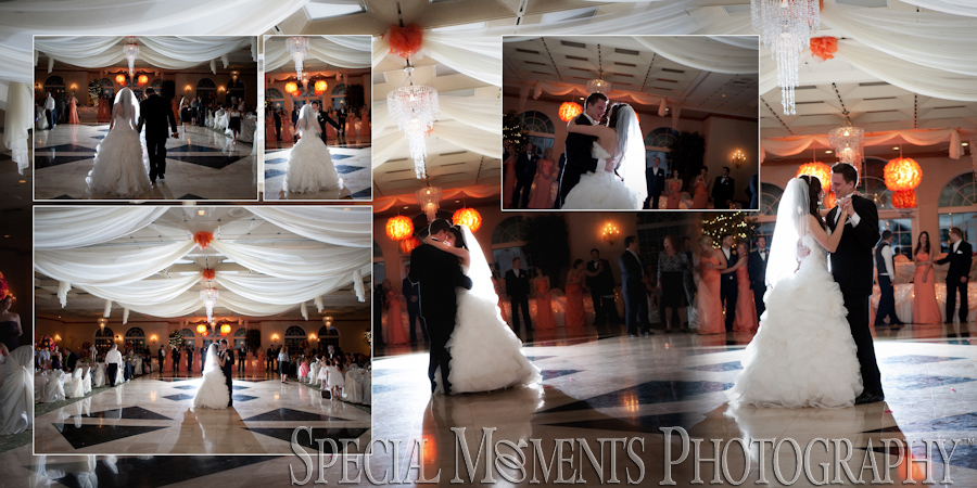 Italian American Club Livonia MI wedding photograph