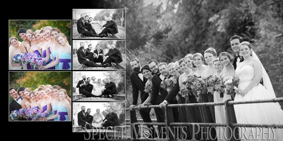 Plymouth Manor Plymouth MI wedding photograph