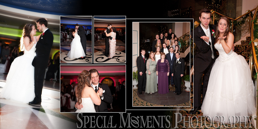 Arnaldo's Banquet Center Riverview MI wedding photograph