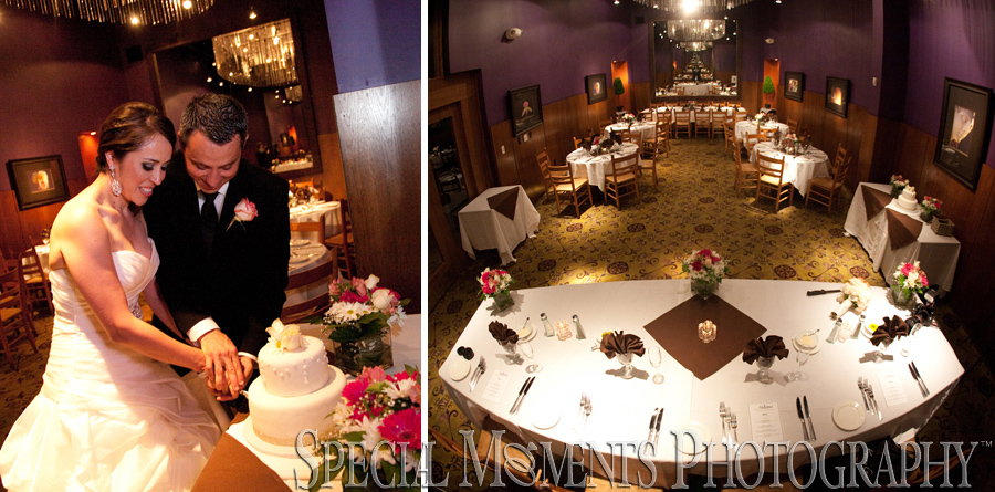 Andiamo Italian Restaurant Novi MI wedding photograph