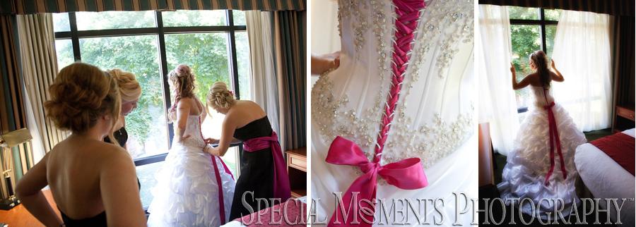 Holiday Inn Southgate MI wedding photograph