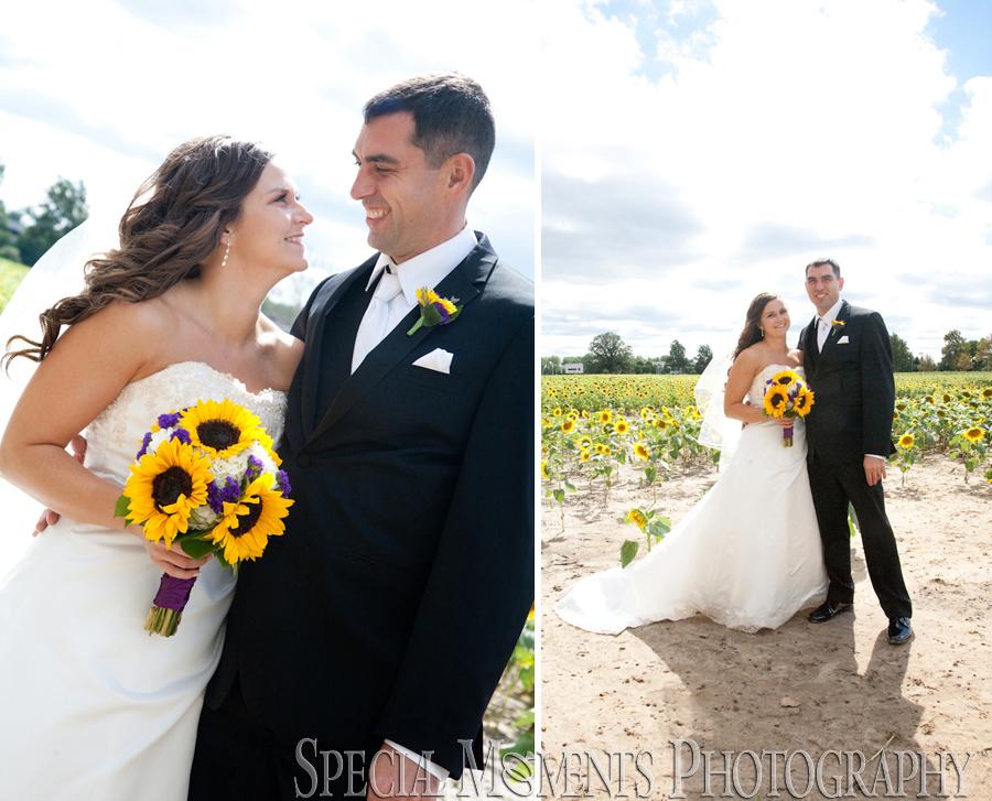 Scott and amanda wedding
