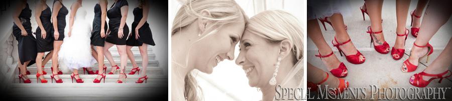 Detroit Institute of Arts Detroit MI wedding photograph