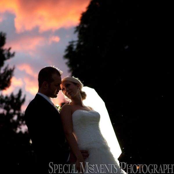 Stephanie & Korey: Crystal Gardens Wedding Southgate MI