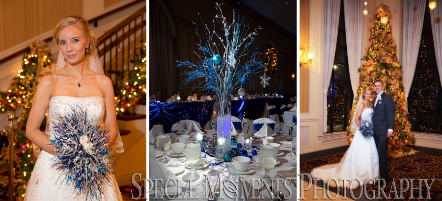 The Palazzo Grande Shelby Twp. MI wedding photograph