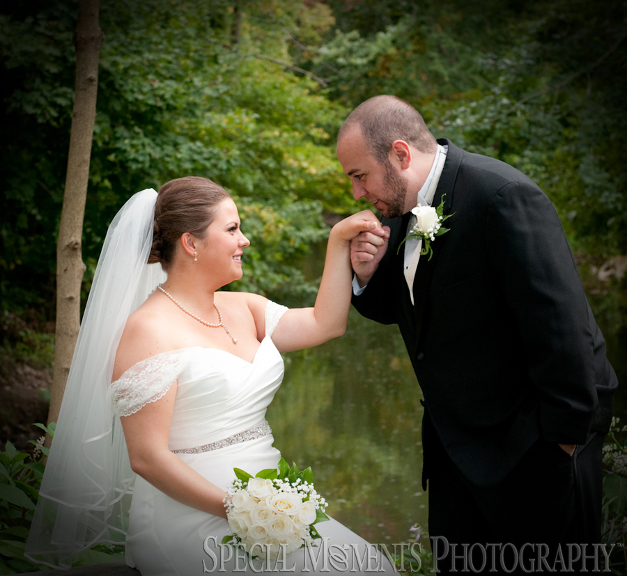Wellers Carriage House Saline MI wedding photograph